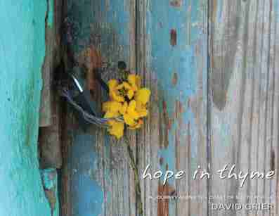 David Grier-Hope in Thyme